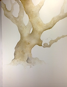 Tree underpainting 2