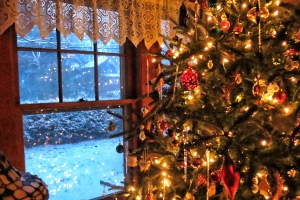Christmas tree and window